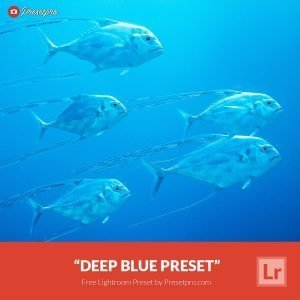Free-Lightroom-Preset-Deep-Blue