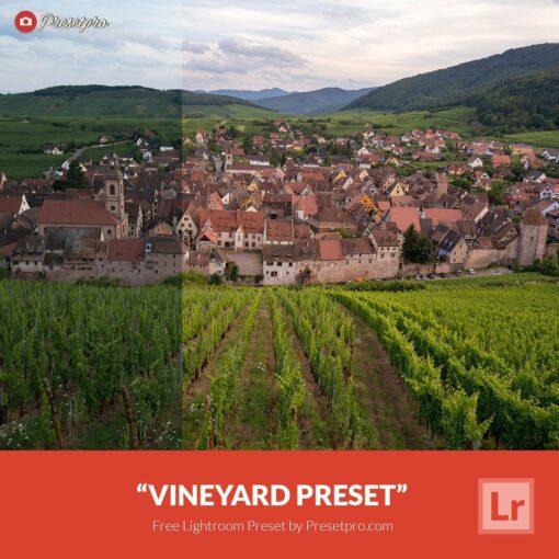 Free-Lightroom-Preset-Vineyard