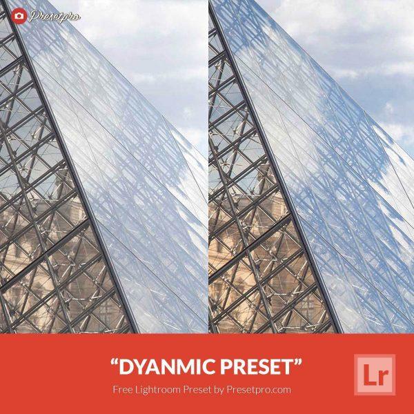 Free-Lightroom-Preset-Dynamic