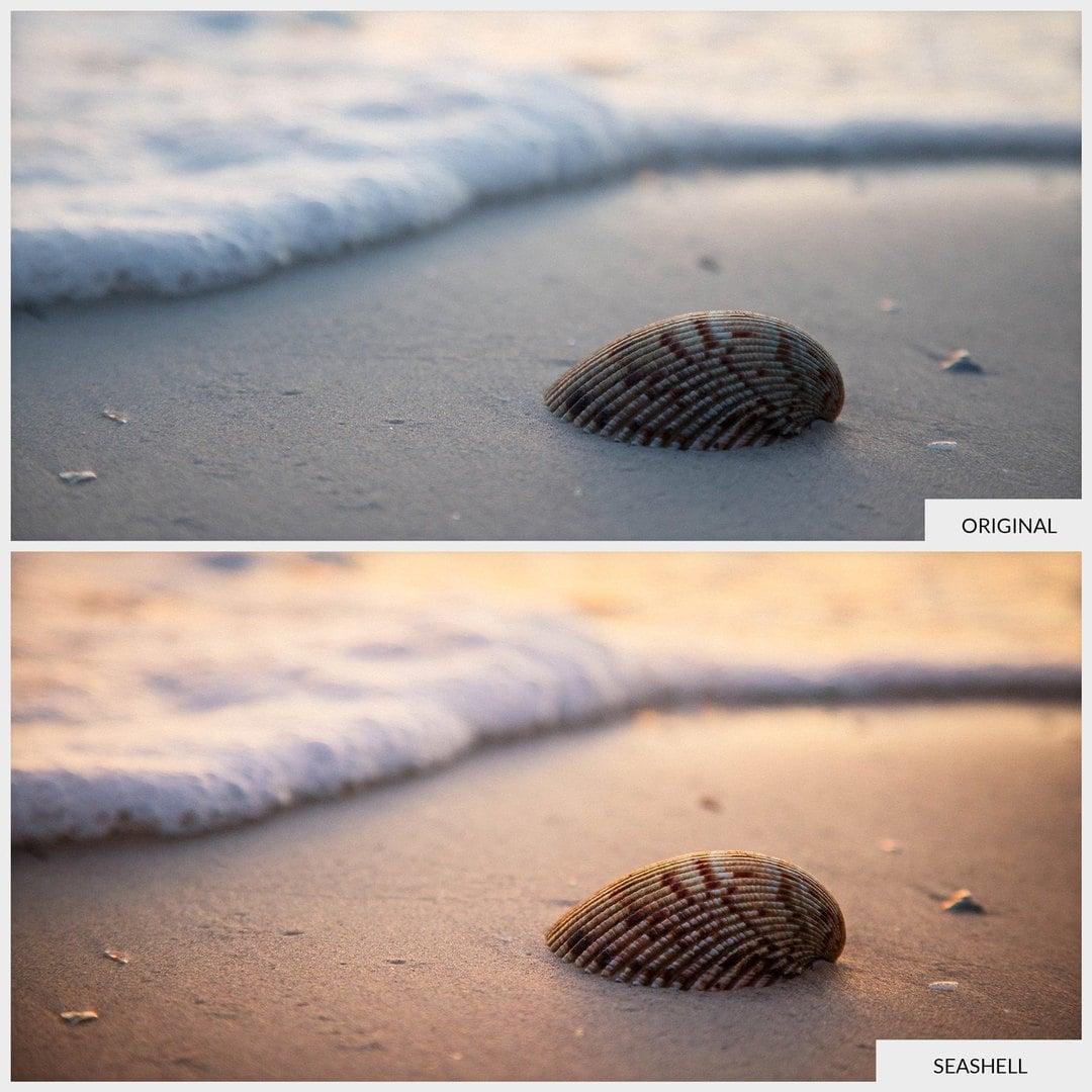 Free-Lightroom-Preset-Seashell-Before-and-After-Presetpro.com