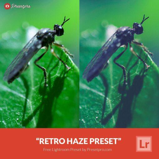Free-Lightroom-Preset-Retro-Haze
