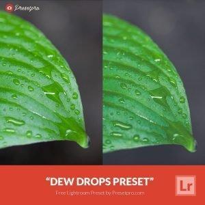 Free-Lightroom-Presets-Dew-Drops