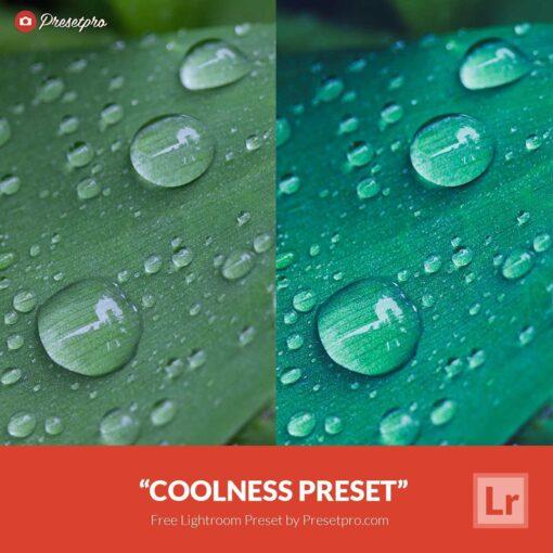 Free Lightroom Preset Coolness