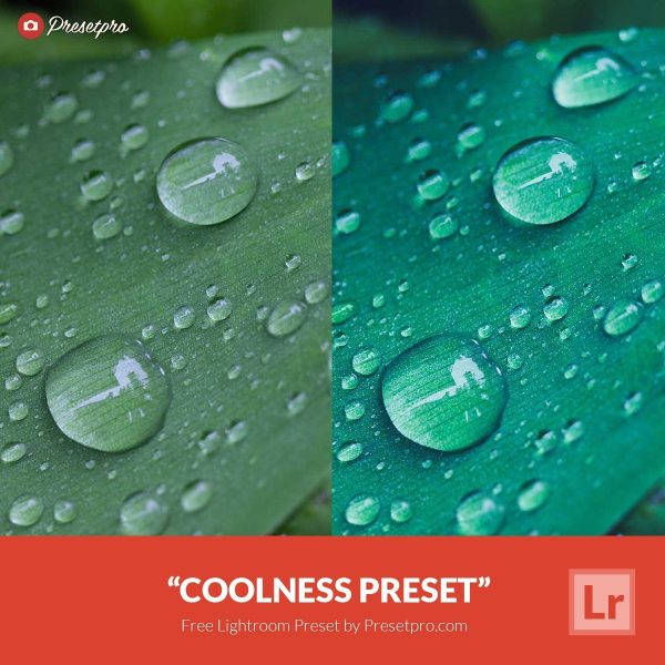 Free Lightroom Preset Coolness