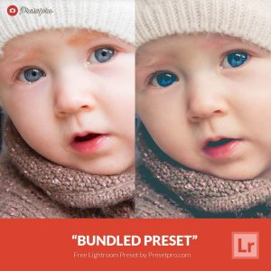 Free-Lightroom-Preset-Bundled