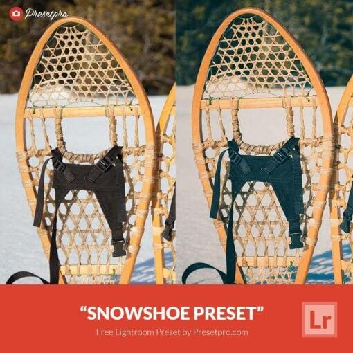 Free-Lightroom-Preset-SnowShoe