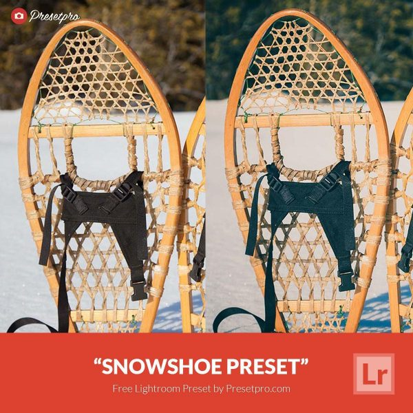 Free-Lightroom-Preset-SnowShoe