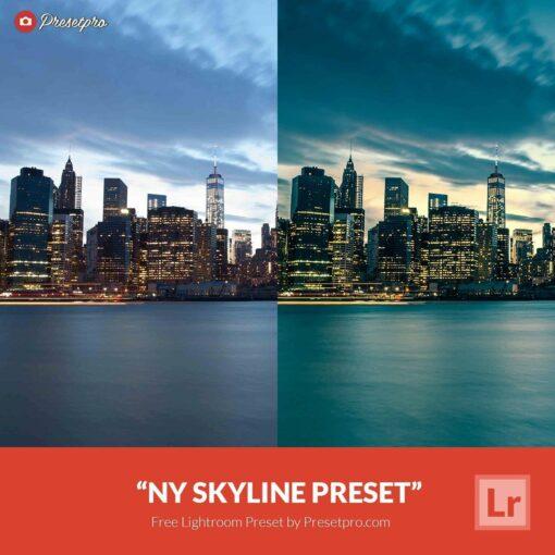 Free Lightroom Presets NY Skyline