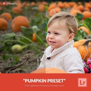 Free-Lightroom-Preset-Pumpkin