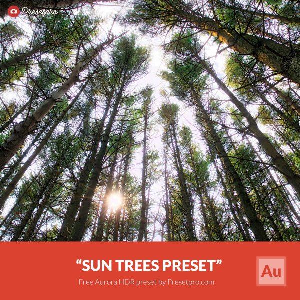 Free-Aurora-HDR-Preset-Sun-Trees