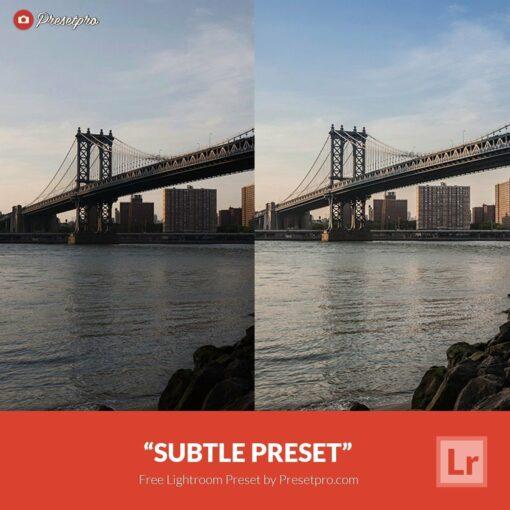 Free-Lightroom-Preset-Subtle
