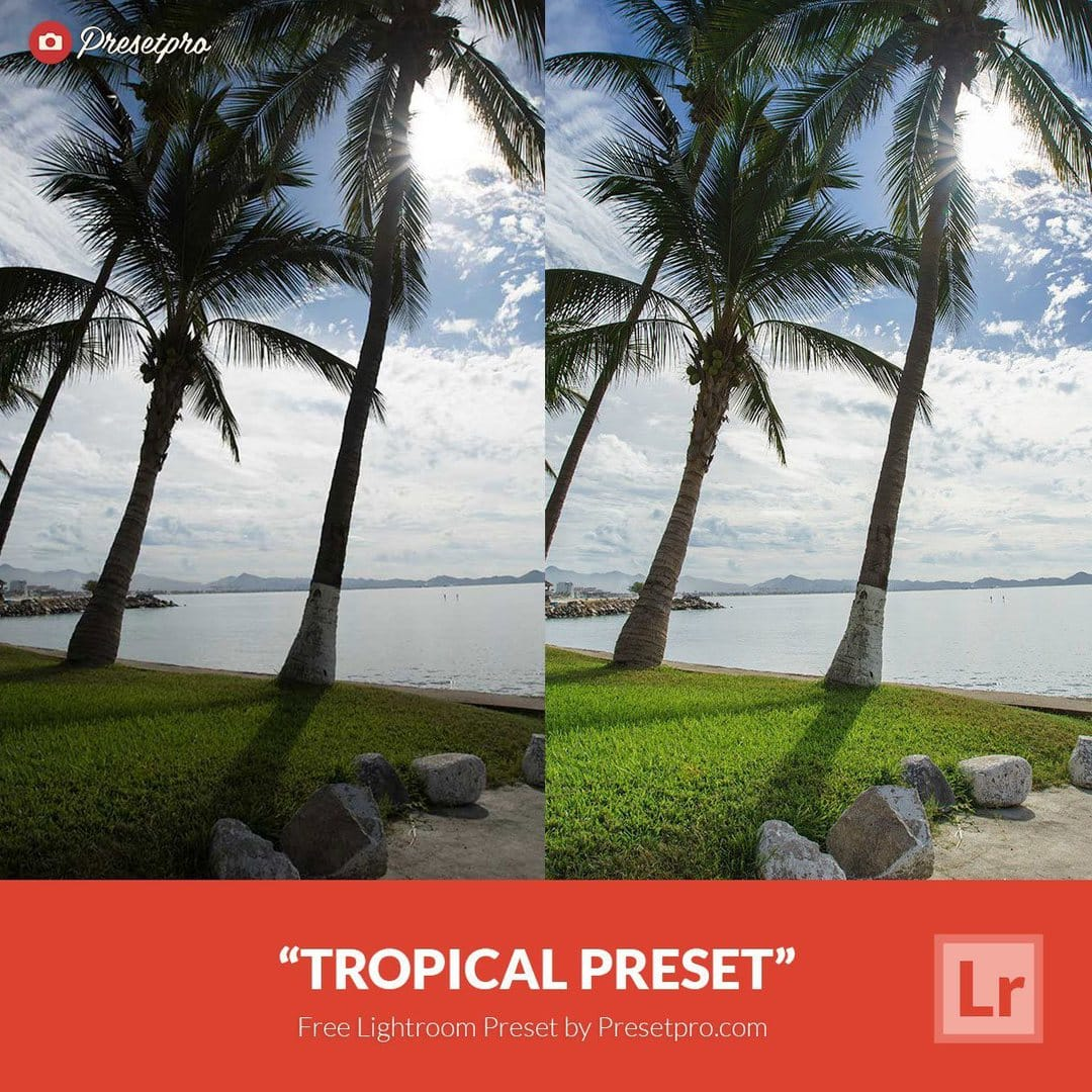 Free Lightroom Preset Tropical - Download Now!