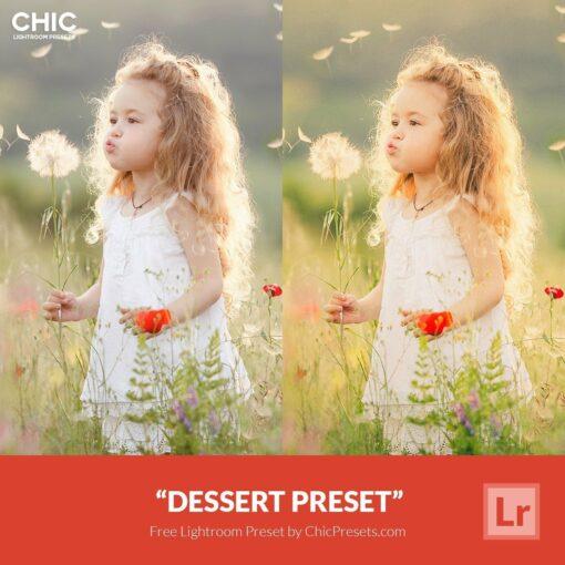 Free Lightroom Preset Dessert