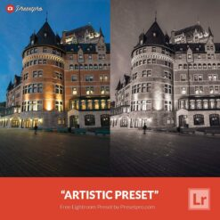 Free-Lightroom-Preset-Artistic