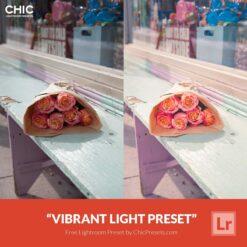Free-Lightroom-Preset-Vibrant-Light