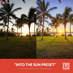 Free-Lightroom-Preset-Into-The-Sun