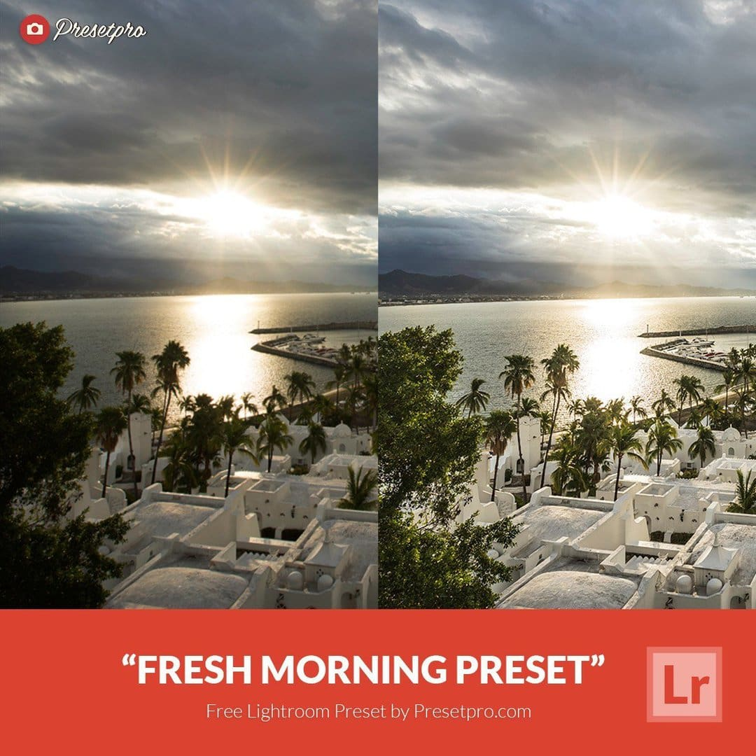 Free-Lightroom-Preset-Fresh-Morning