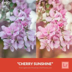 Free Lightroom Preset Cherry Sunshine