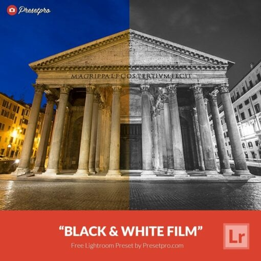 Free-Lightroom-Preset-Black-and-White-Film