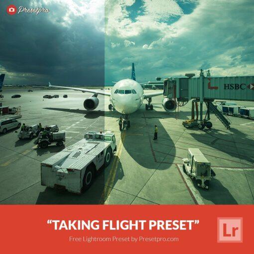 Free-Lightroom-Preset-Taking-Flight