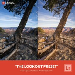 Free-Lightroom-Preset-The-Lookout