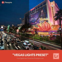 Free-Lightroom-Preset-Vegas-Lights
