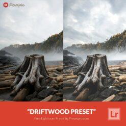 Free-Lightroom-Preset-Driftwood