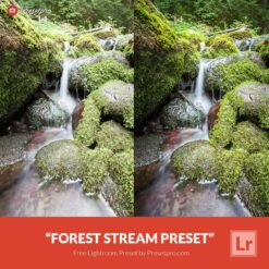 """Download this Free Lightroom Preset """"Tropical Nights"""" compliments of Presetpro.com. The """"Tropical Nights"""" preset is perfect for Night cityscape photography and it will give you photo a clean and crisp look! Best time to take you photo is during blue hour"""