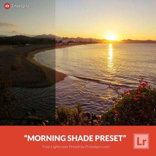 Free-Lightroom-Preset-Morning-Shade
