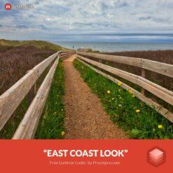 Free-Luminar-Look-East-Coast-Preset-Presetpro.com