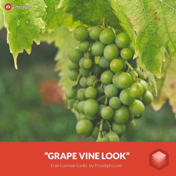 Free-Luminar-Look-Grape-Vine-Preset-Presetpro.com