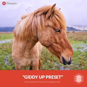 Free-Luminar-Preset-Giddy-Up-FreePresets.com