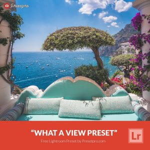 Free-Lightroom-Preset-What-a-View-Presetpro