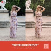 Free-Lightroom-Preset-Filterlook-Presetpro.com