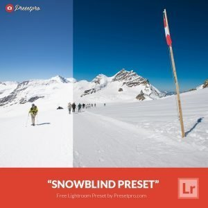 Free-Lightroom-Preset-Snow-Blind-Presetpro