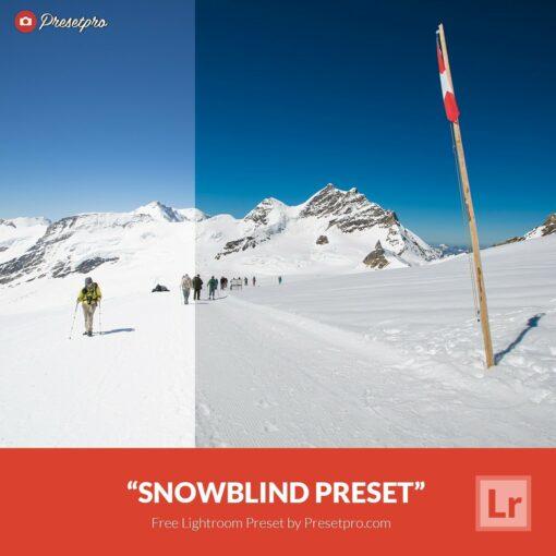 Free-Lightroom-Preset-Snow-Blind-Presetpro
