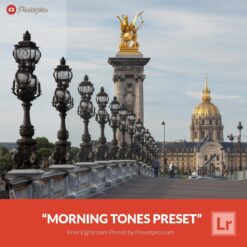 Free-Lightroom-Preset-Morning-Tones
