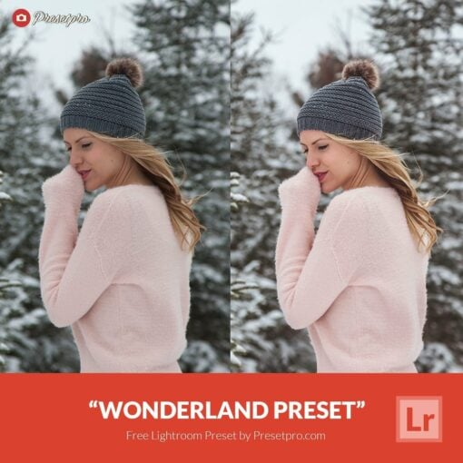 Free-Lightroom-Preset-Wonderland