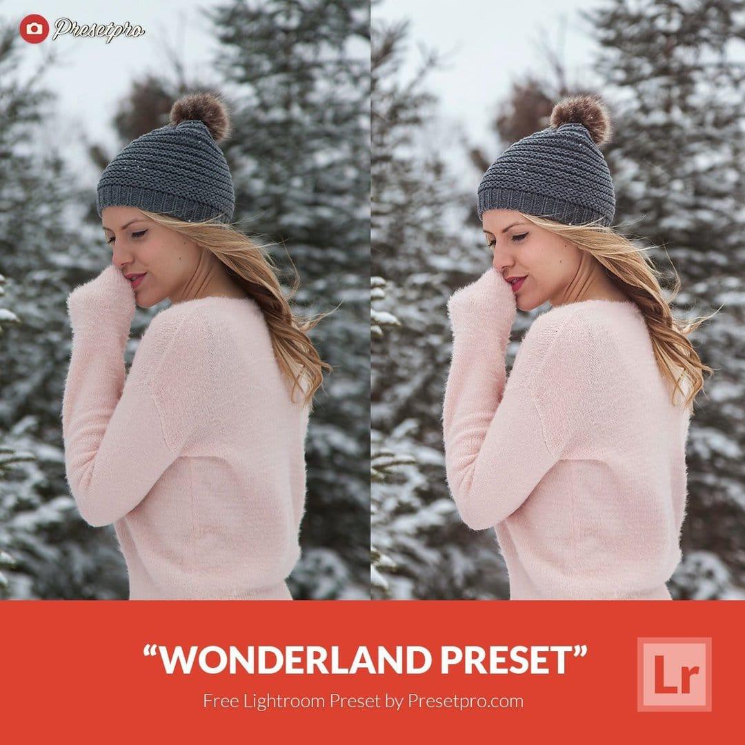 Free Lightroom Preset | Wonderland - Presetpro com