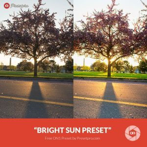 Free On1 Preset Bright Sun