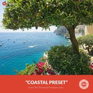Free-On1-Preset-Coastal
