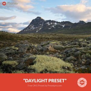 Free-On1-Preset-Daylight