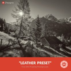 Free-On1-Preset-Leather