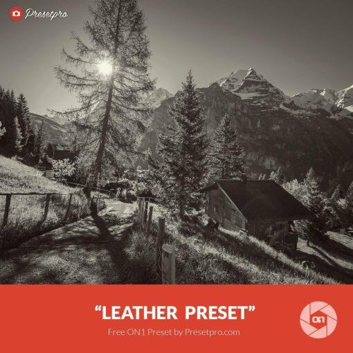 Free-On1-Preset-Leather