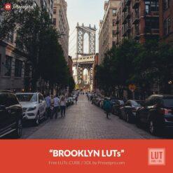 Free-Color-Lookup-Table-Brooklyn-LUTs-CUBE-3DL-Presetpro.com