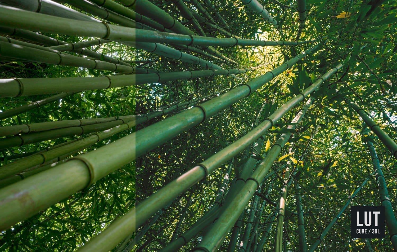 Free-Color-Lookup-Table-Fuji-Before-After-Film-LUTs-CUBE-3DL-Presetpro.com