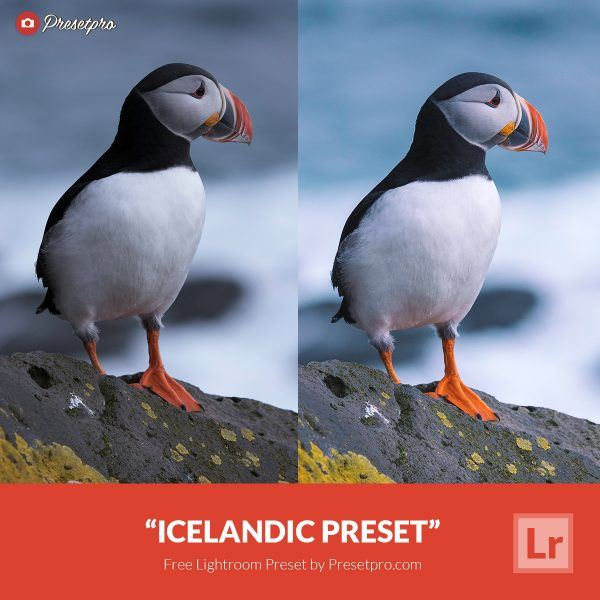 Free-Lightroom-Preset-Icelandic-Presetpro.com