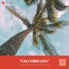 Free-Color-Lookup-Table-Cali-Vibes-LUTs-CUBE-3DL-Presetpro.com