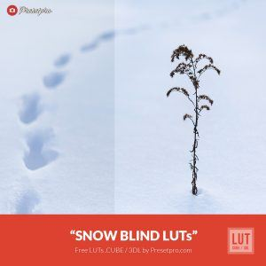 Free-Color-Lookup-Table-Snow-Blind-LUTs-CUBE-3DL-Presetpro.com