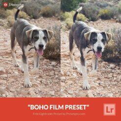 Free-Lightroom-Preset-Boho-Film-Presetpro.com